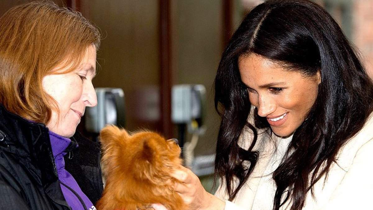 Меган Маркл посетила приют для животных в Лондоне