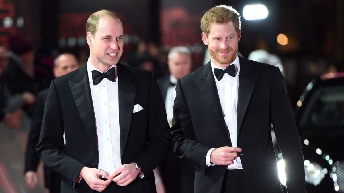 Експерт з мови тіла розповів про емоції принців Гаррі та Вільяма