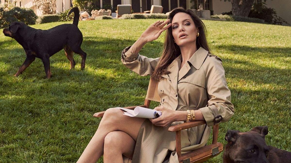 Анджелину Джоли застали в костюме пчеловода во Франции