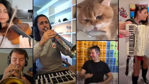 """Новий котячий хіт: музикант реміксує кумедне """"ням-ням"""" кота, який п'є молоко"""