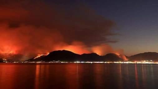 """""""Наш дом горит"""": как турецкие знаменитости реагируют на стихийные пожары в стране"""