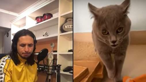 Музыкант The Kiffness перевыпустил мегапопулярный трек со злым котом: видео