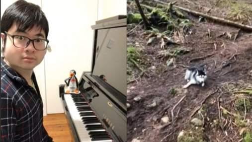 Дуэты с хаски, птицами и бобром: пианист записывает впечатляющие видео с животными
