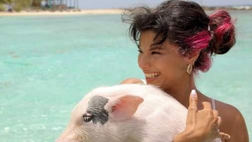 Мішель Андраде поплавала зі свинями в Карибському морі: курйозні фото